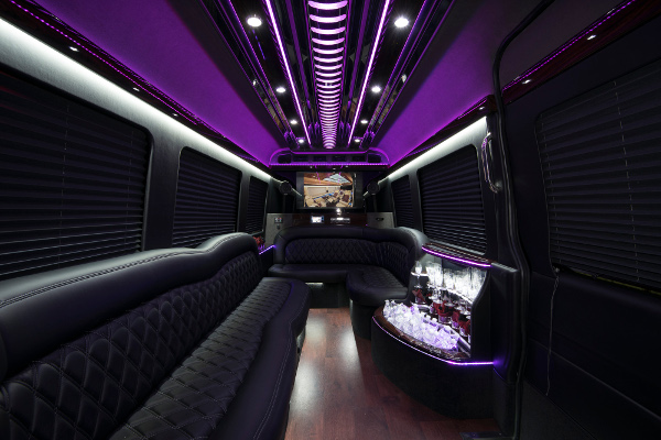 12 Passenger Party Buses Scottsdale